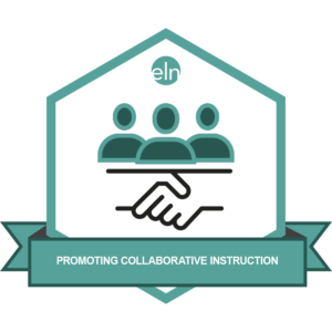 Promoting Collaborative Instruction